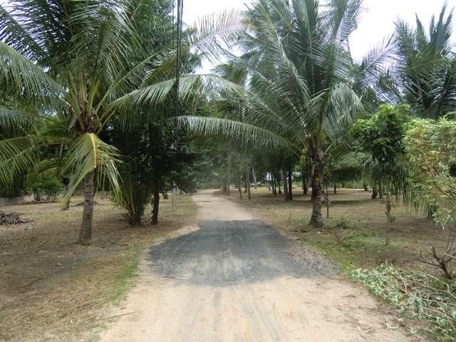 Weg durch ein Resort zur Straße